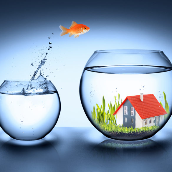 """January """"Best Month for Quick Sale"""" Boosted by Start of 2020 House Price Jump!"""